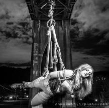 bridgesuspension-8306